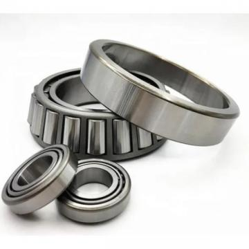 Cylindrical Roller Bearing (NU 312 ECP)